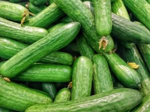 cucumbers-1081700_1920