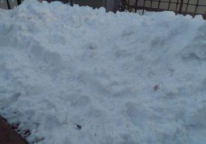 庭にたまった雪の山