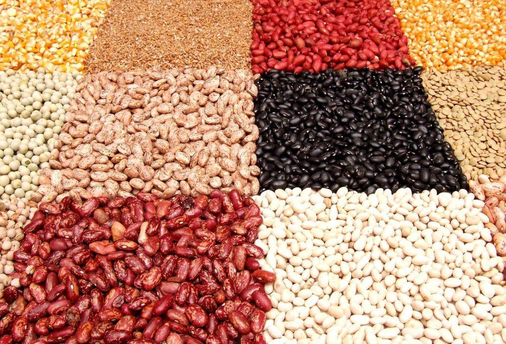 豆の写真・豆の日のイメージ画像
