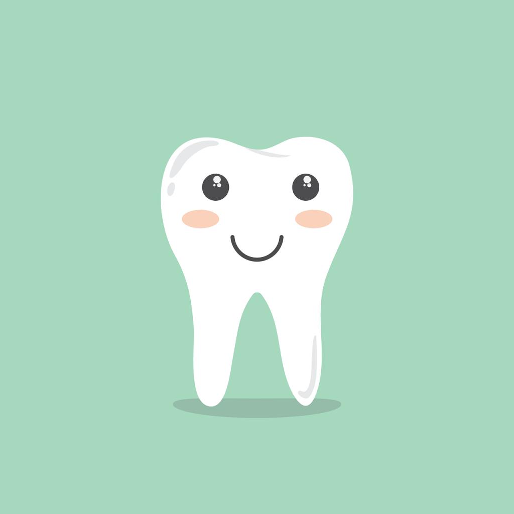 歯のイメージ画像