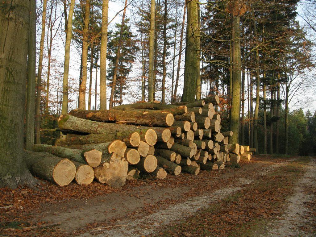 丸太の木材
