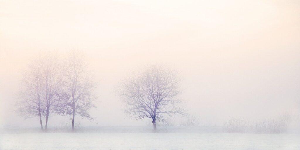 冬景色・寒いのイメージ画像